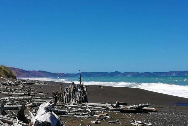 Beaches / Fishing Morere Lodge